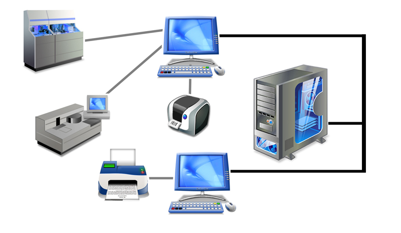 Networking & Cabling